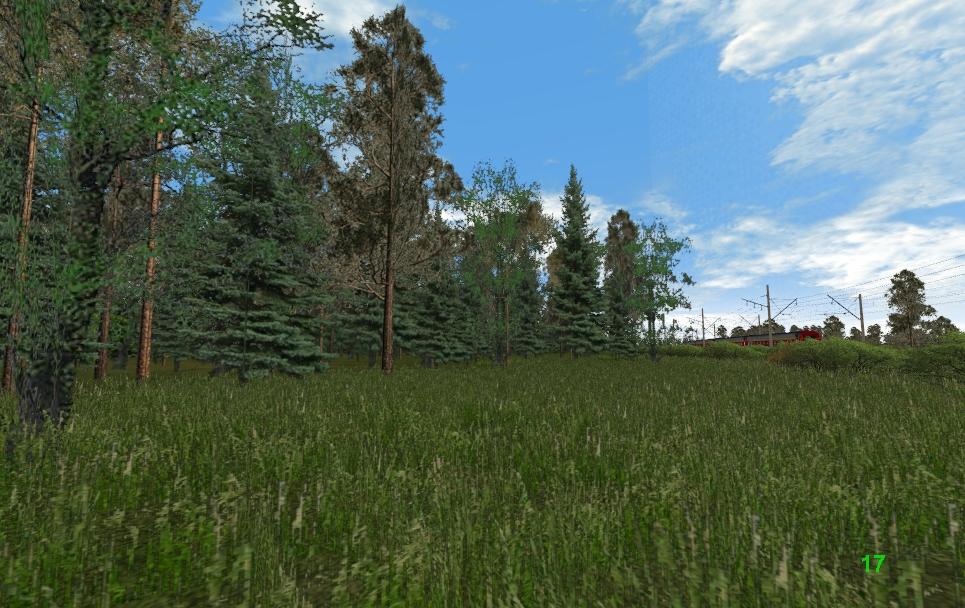 Немного леса.